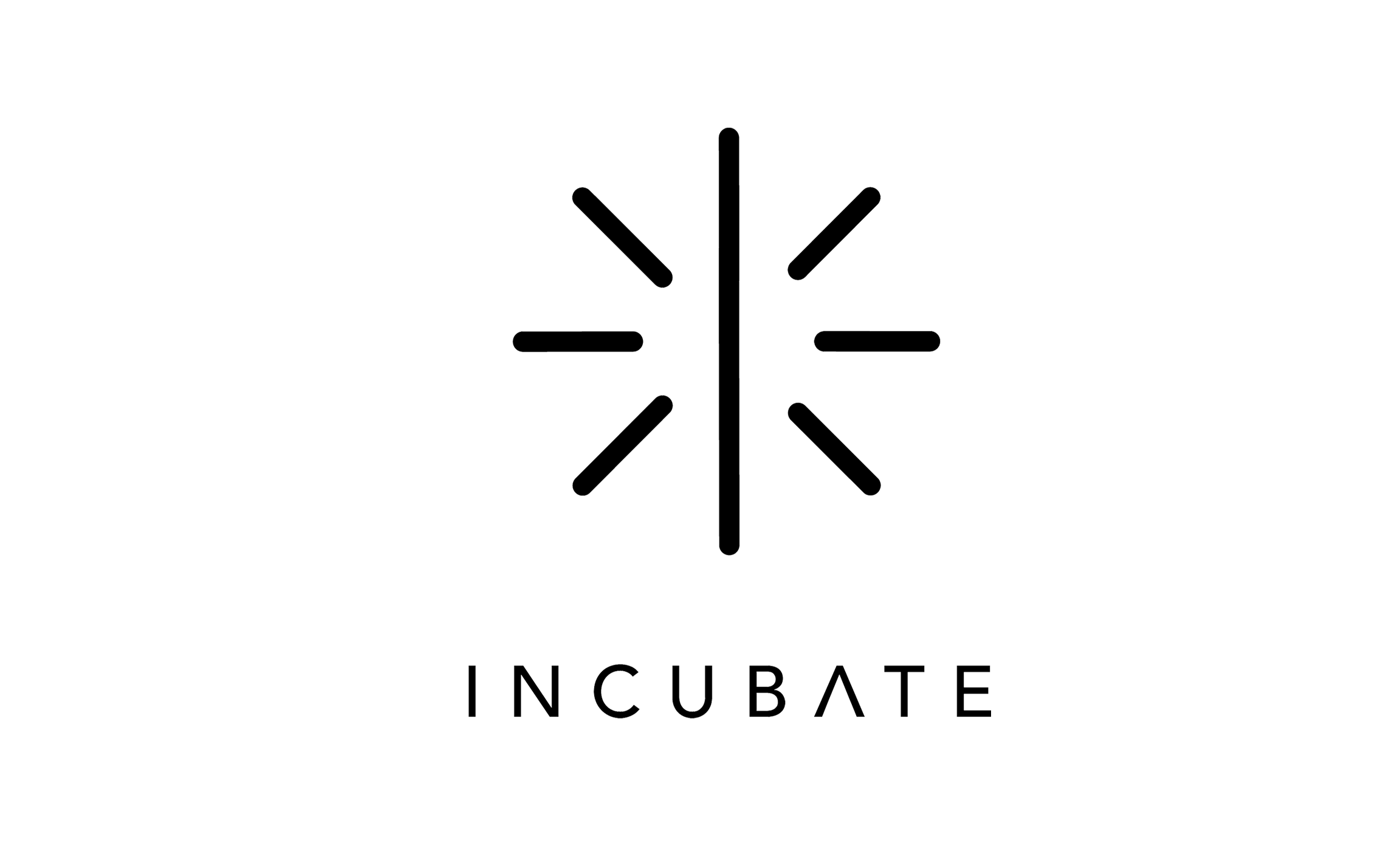 Launch You Incubate